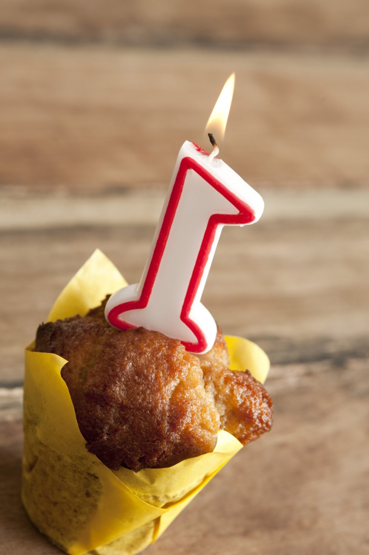 My Blog's 1st Birthday!!