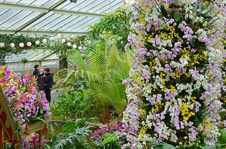 Kew 7